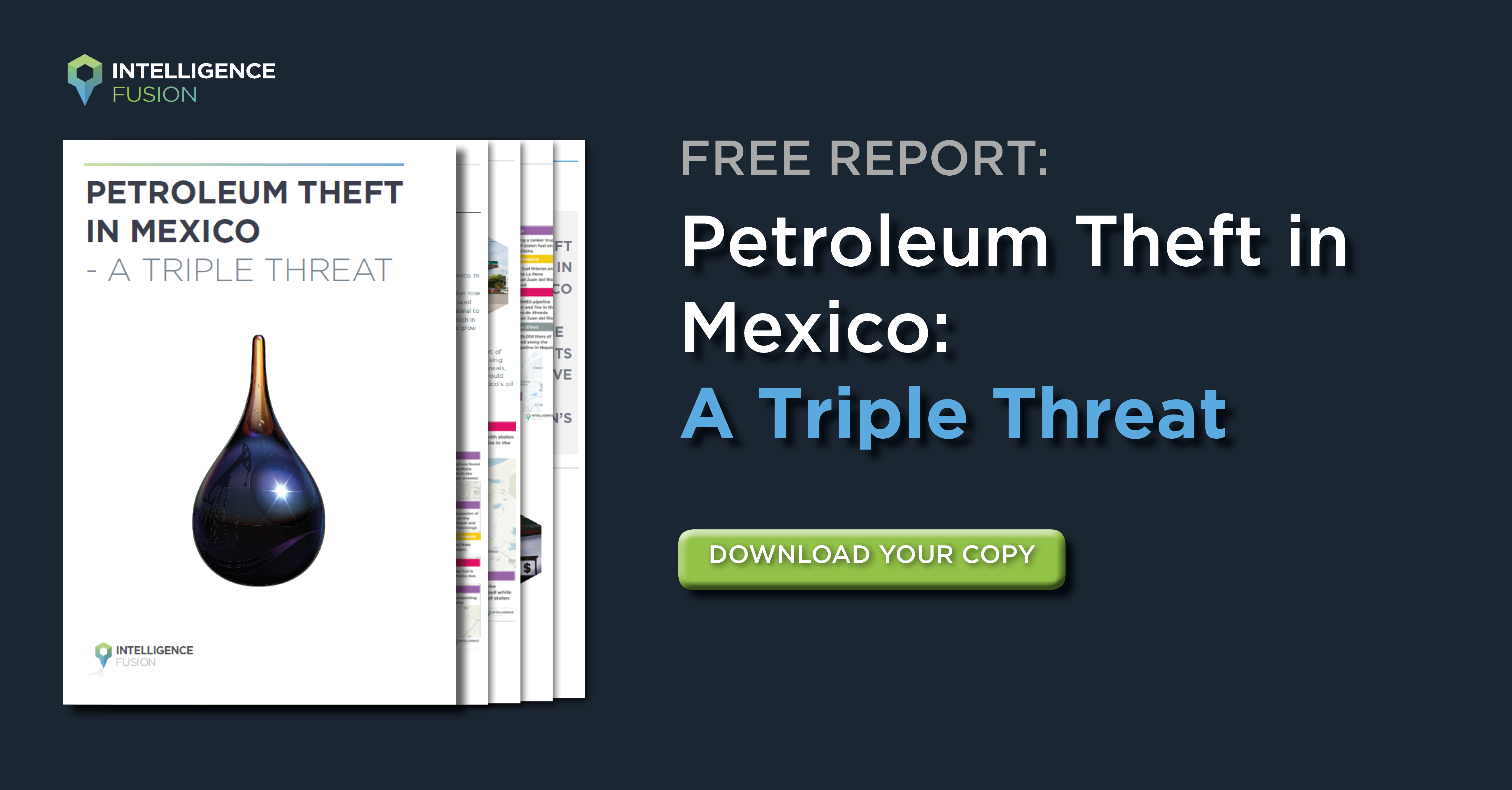 Download Your Oil Thefts in Mexico Report